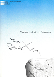 vogelconcentratiesingroningen